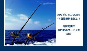釣りビジョンVOD動画14日間無料視聴する方法!見逃し配信も!釣り専門サービス